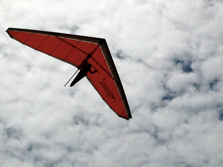 Gliding against the clouds...